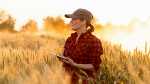 Read more about the article Why you need to develop an emergency plan with New Zealand's leading Rural Consultants for AgSafe New Zealand Ltd.