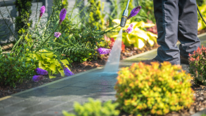 Read more about the article Give your home a complete freshen up with Rotorua's leading commercial and house washing service, Exterior Washing Services.