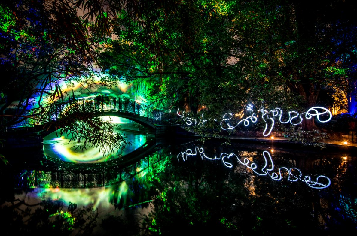 You are currently viewing Discover Nelson's spectacular Te Ramaroa Light Festival with the award-winning luxury South Island motel, Century Park Motor Lodge.
