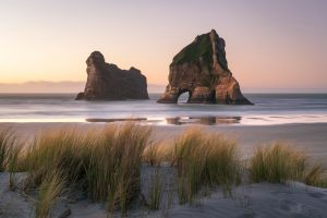Read more about the article Top five natural attractions to see in Nelson with the award-winning luxury South Island motel, Century Park Motor Lodge.